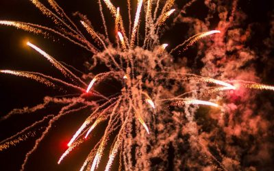 Fireworks, Dogs, and Safety